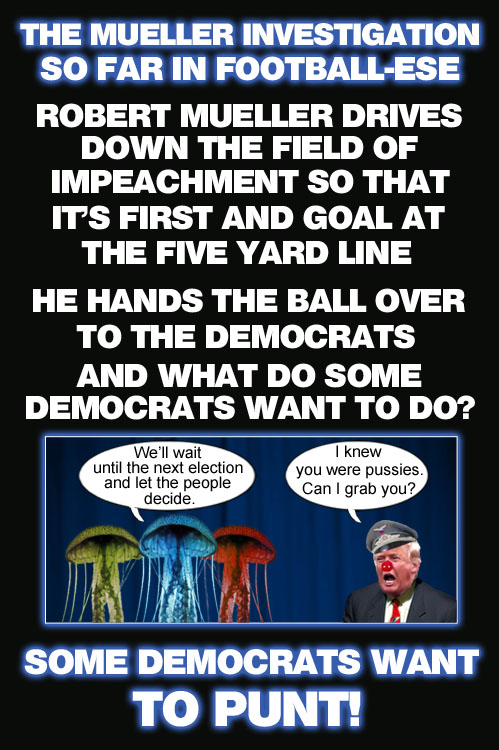 Despite former Special Counsel Robert Mueller handing the ball to them on the field of impeachment 1st and goal at the five yard line, some Democrats want to punt, thus again snatching defeat from the jaws of victory and letting Republicans get away with their costly, authoritarian shenanigans.