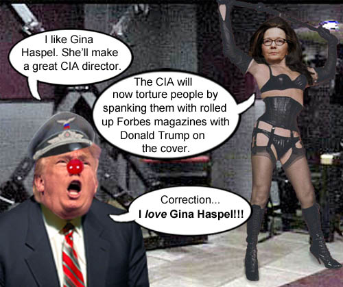New CIA director and torture aficionado, Gina Haspel, has announced a new method of interrogation that meets with overwhelming approval from American CEO/Dictator Donald Trump.